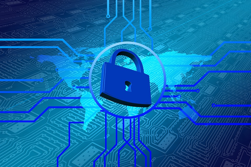 Quels sont les rôles du Data Protection Officer(DPO)?